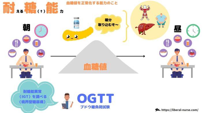 耐糖能・OGTT・ブドウ糖負荷試験