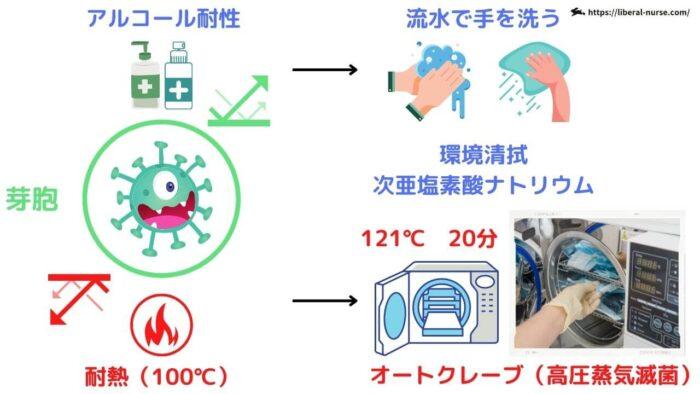 オートクレーブ(高圧蒸気滅菌)・芽胞