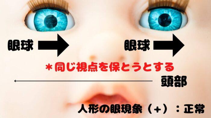 人形の眼現象