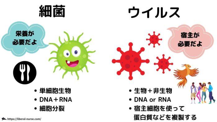 細菌・ウイルス